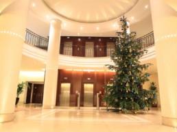 Grand sapin de Noël en entreprise par Green Decor