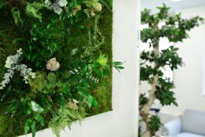 Tableau Végétal par Green Decor