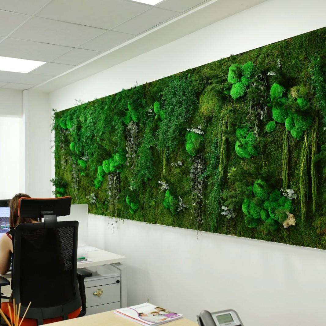 Tableau végétalisé par Green Decor