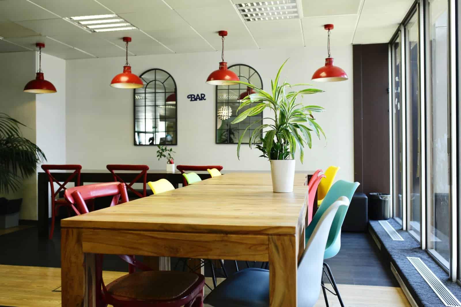 Green Decor propose des aménagements verts pour les entreprises à paris et sa region