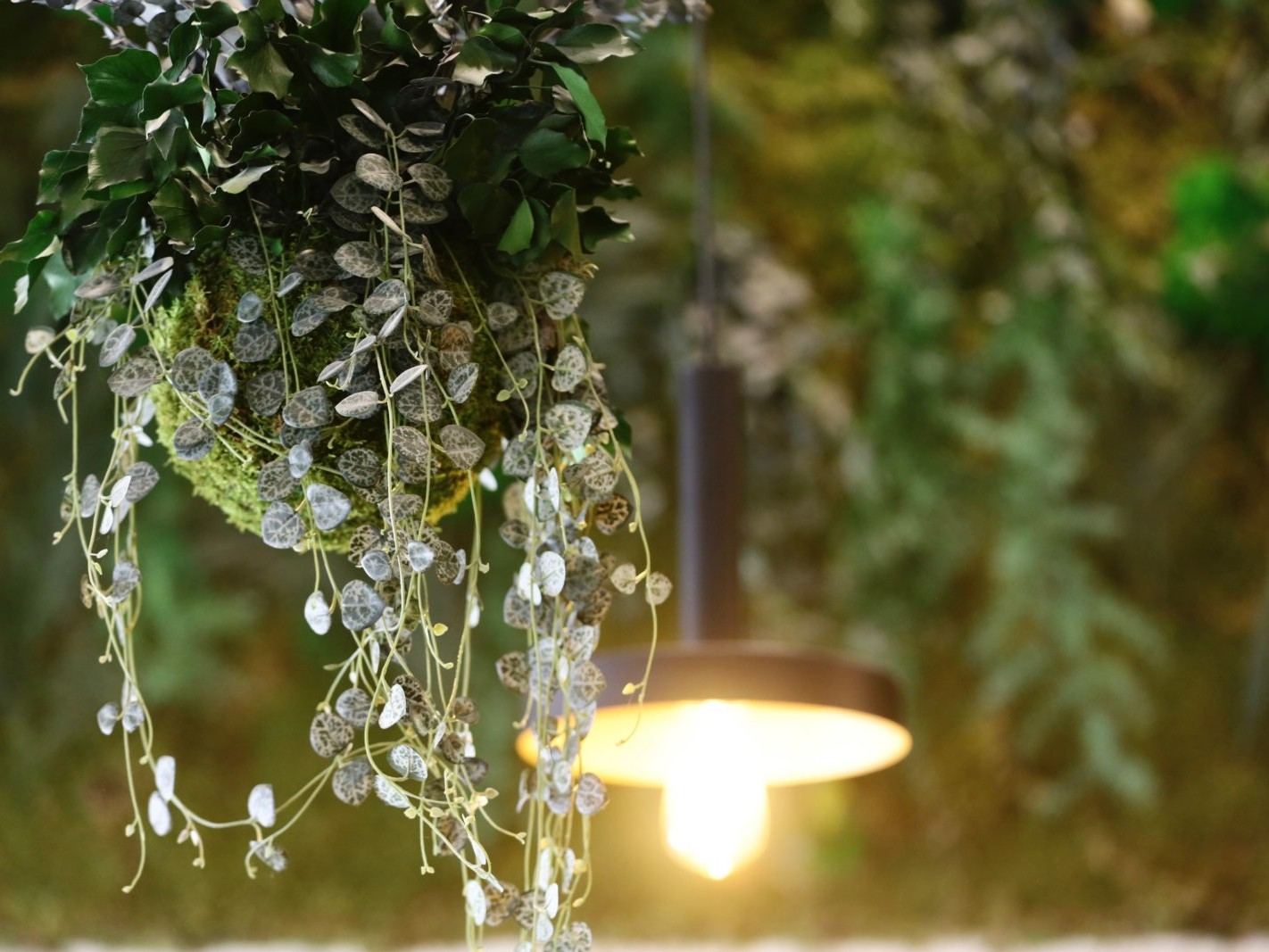 mur végétal par Green Decor