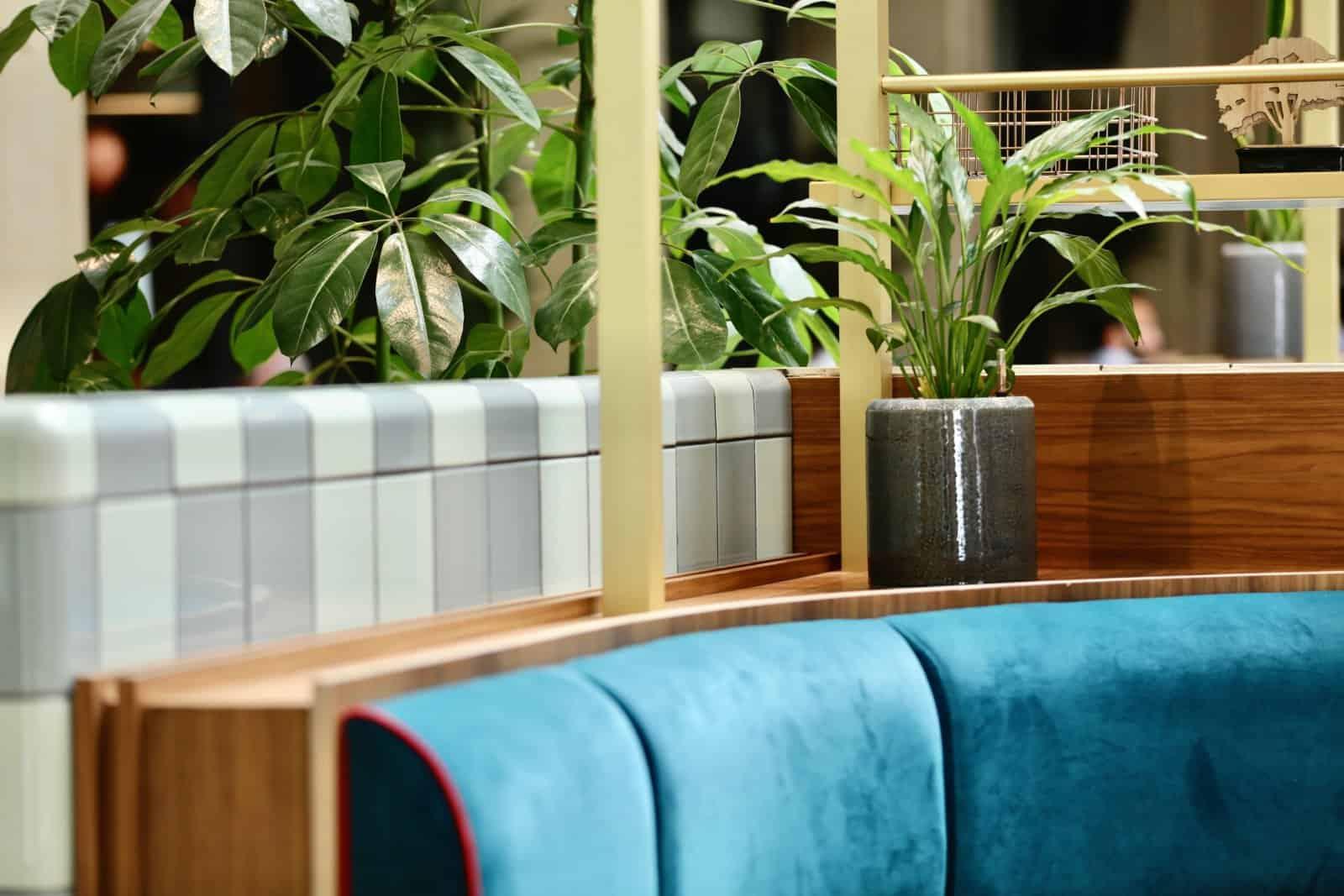 Aménagement d'espaces verts et location de plantes à Paris et sa région par Green Decor