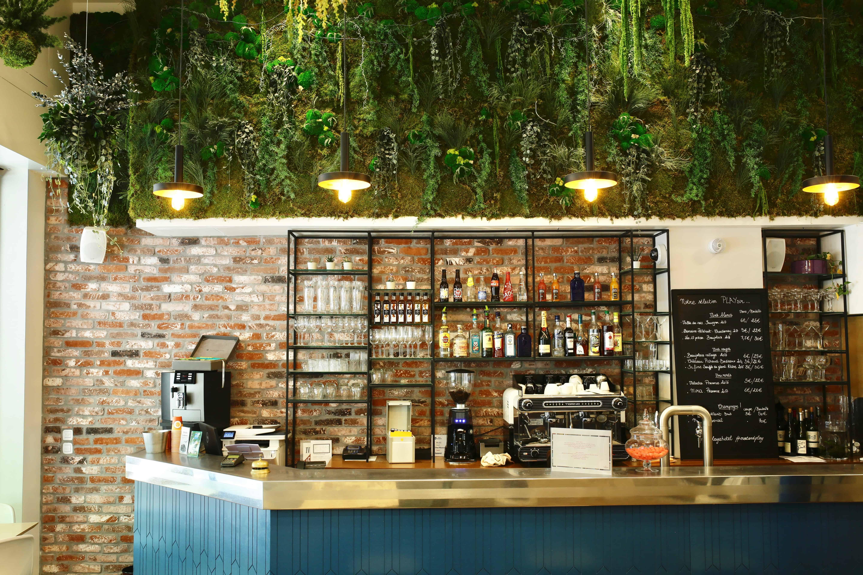 location de plantes et mur végétal