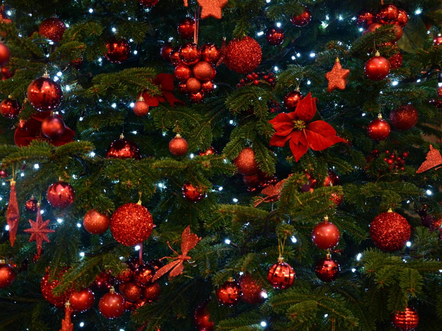 Décorations et sapins de Noël en entreprise par Green Decor