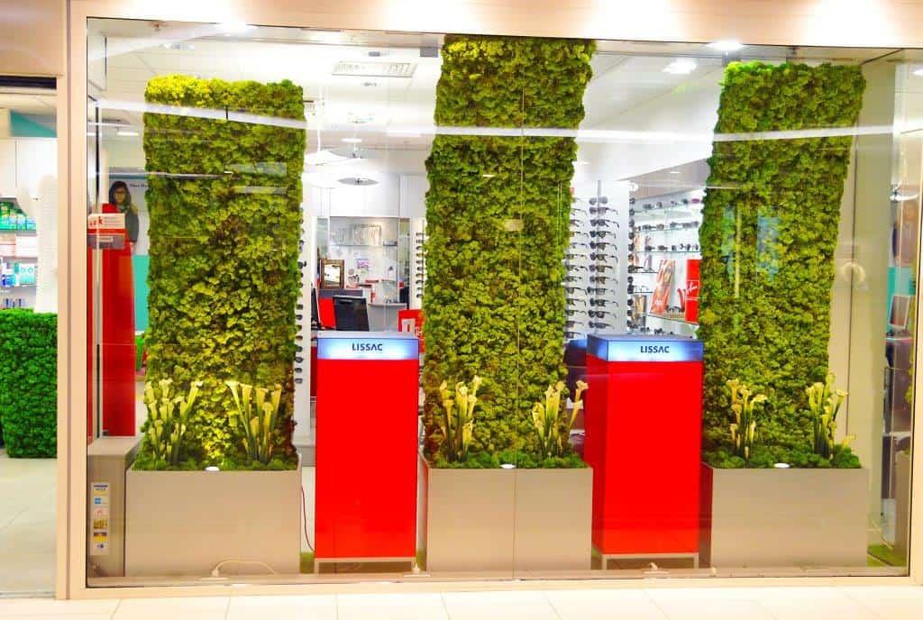 vitrine végétalisée - Green decor Design Végétal