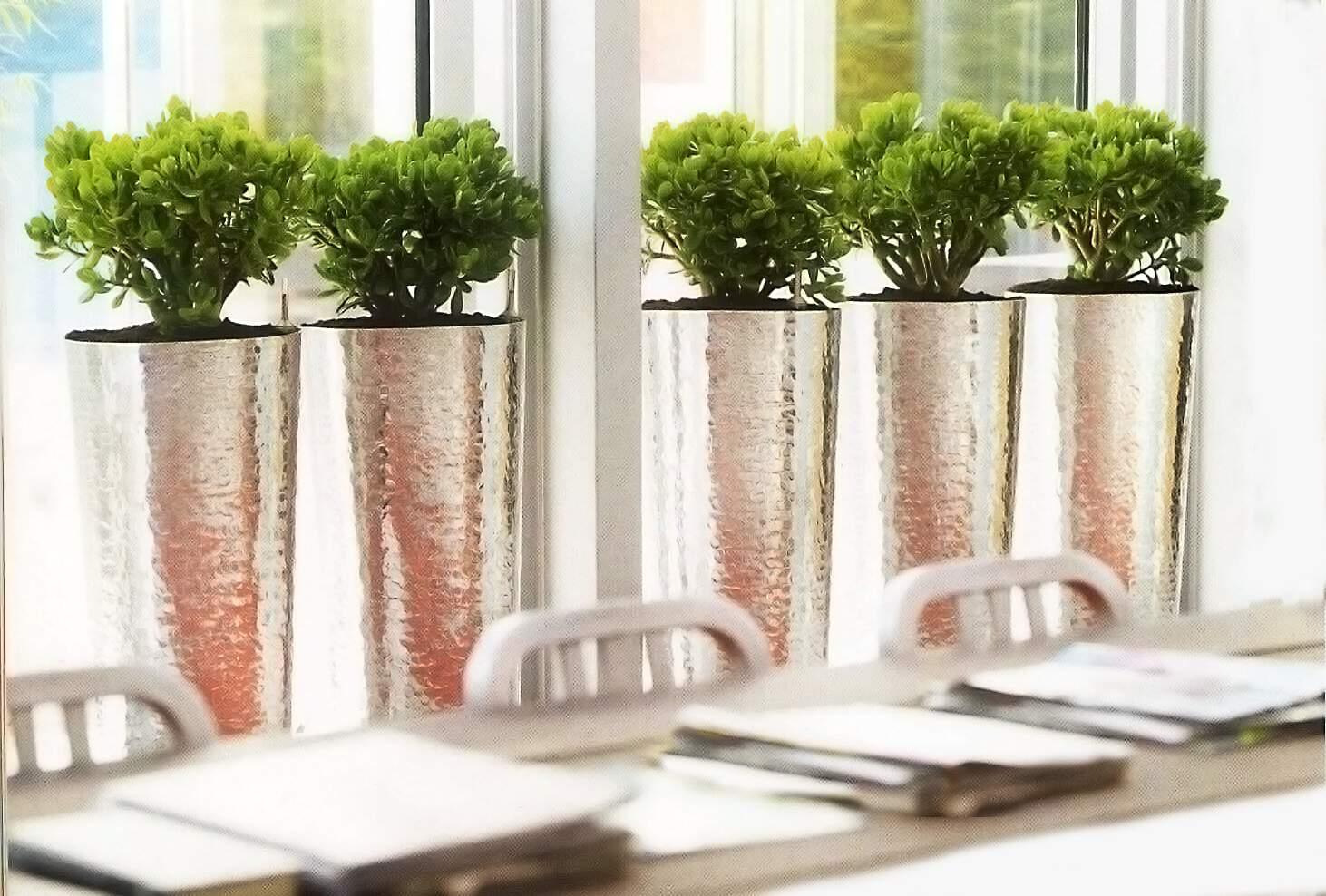 Aménagement végétal intérieur et pots design Végétal par Green Decor