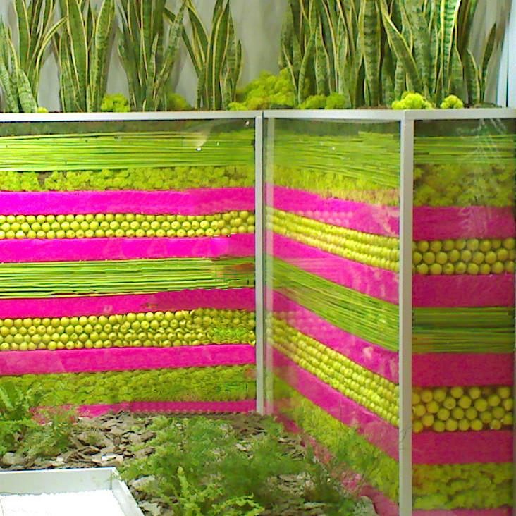 Stand végétal création Green Decor